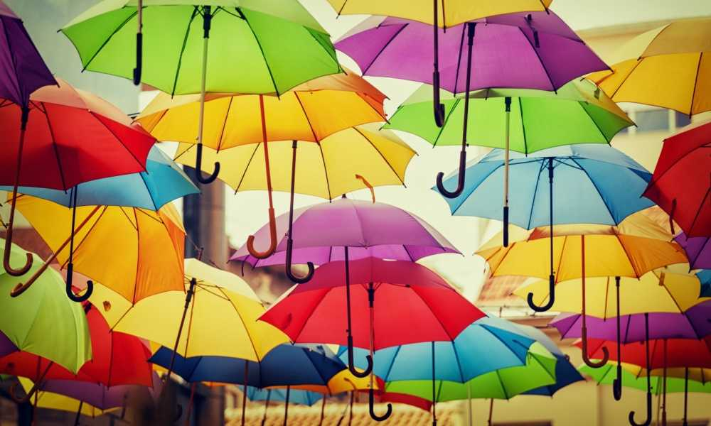 Best Inverted Umbrella: Complete Reviews and Key Features