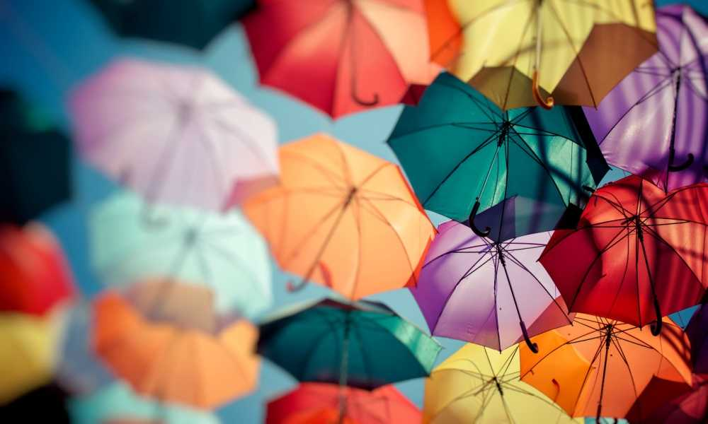 Five Umbrellas We Highly Recommend in 2019